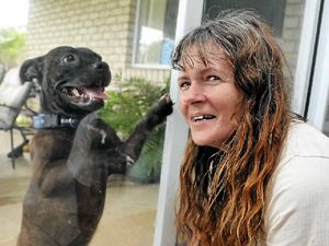Animal rescuers need a helping hand to prep for disasters