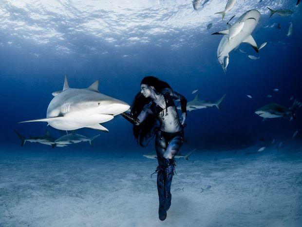 Hannah Fraser swims with sharks. Photograph: Shawn Heinrichs