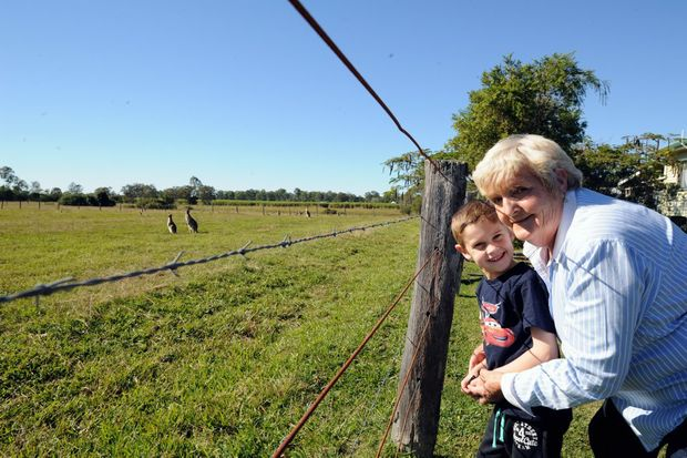 Granville resident of 24 years Marianne Jones with one of her grandchildren, Brock Burns, 5, check out the growing mob of kangaroos.