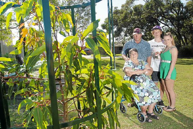 PARK MEMORIAL: The family of Bali poisoning victims Noelene and Yvana Bischoff, Jean Bischoff (Noelene's mum), Malcolm Bischoff (Noelene's brother), and his children Logan and Grasienne, at the park in Wurtulla opposite Jean's home where a tree has been planted in their memory.
