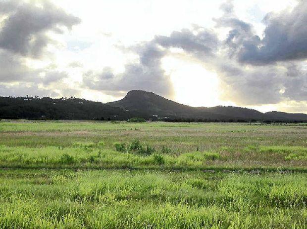 GOLDEN CANE: Valdora cane land bought by the council for a solar farm.