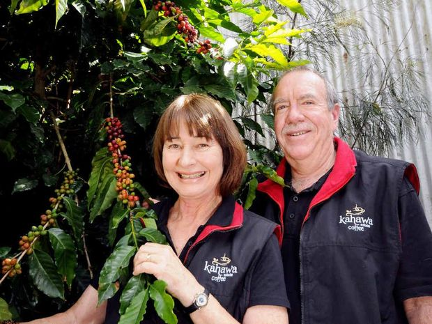 CREAM OF THE CROP: Wendy and Jos Webber of Kahawa Estate Coffee have been awarded a gold medal for their Magna roast and two bronze medals in the Plunger Single and Cappuccino classes at the Royal Hobart Fine Food Awards.