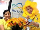 Daffodil Day fundraiser in full flight at airport