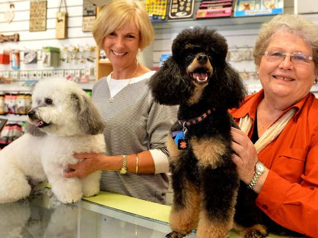 GROOMED: Animal Affair Dog Boutique has won grooming awards at the Ekka. Astrid Walker (left) is with Milo and Denise Clarke is with McDougal.