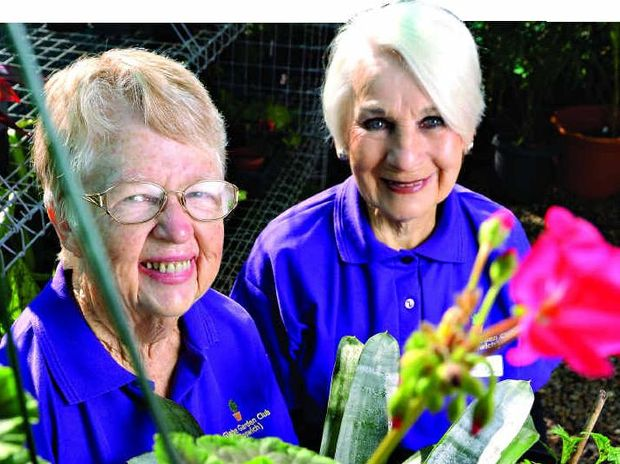 PARADISE FOUND: Faye Wright and Mavis Wakefield promote the upcoming Ipswich Home Gardeners' Expo at the Glebe Road Uniting Church on August 30.