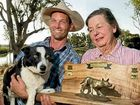 Dogs delight at woolshed event