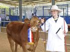 Dalby State High Show Cattle Team member Lucy Kucks was named the Junior Leader Grand Champion on Tuesday.