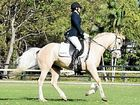 Bangalow dressage competition draws strong field of riders