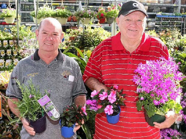 REPLANTING: Vietnam veterans Bill Shaw and Geoffrey Fallis pick out plants at Bunnings.