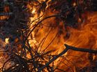 Abbott hints financial assistance for bushfire victims