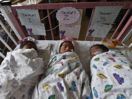 The three healthy babies.