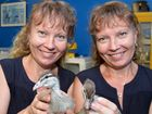 Seabird rescue hero twins win health lottery