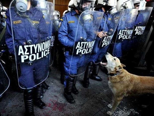 The dog nicknamed Loukanikos or 'sausage' barks in front of Greek riot police in central Athens on December 8, 2010. Greek media reports on October 8, 2014 that the internationally famous dog, has died after he retired from protests in Athens. The dog was often photographed facing off with riot police and running through tear gas during demonstrations.