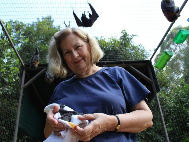 Cheryl Cochran with bats in care.