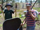 Working as a team are Tim Noll, 10, and Will Loughlin, 11. Concordia Primary Campus students plant trees at Darling Downs Zoo.