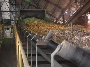 Maryborough sugar mill - cane arrives at the mill. Photo: Mat Nott / Fraser Coast Chronicle
