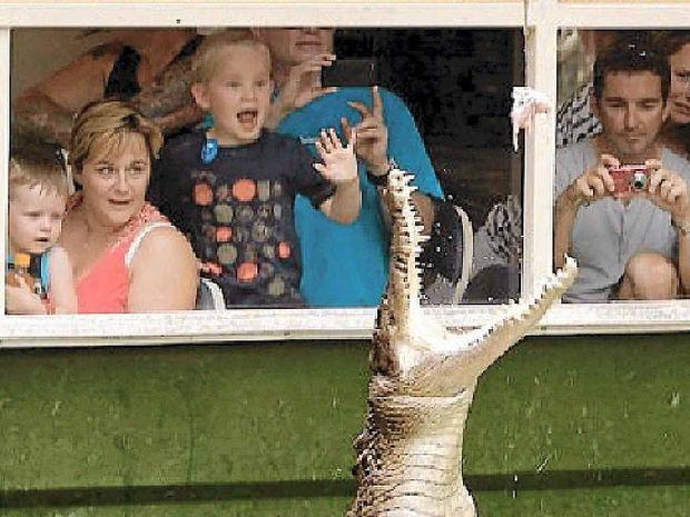 SNAP HAPPY: Hartley's Crocodile Adventures is a popular tourist attraction.