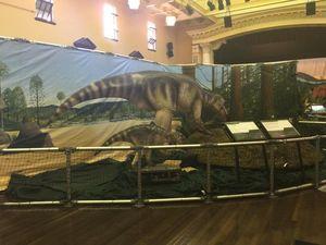Sneak peek of dinosaur exhibition