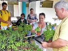 Benefits grow from community gardens
