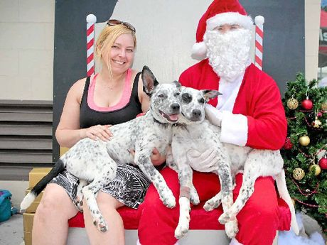 CUTE DUO: Hunter and Patch have their photo taken with Santa and foster carer Kelly Shields.