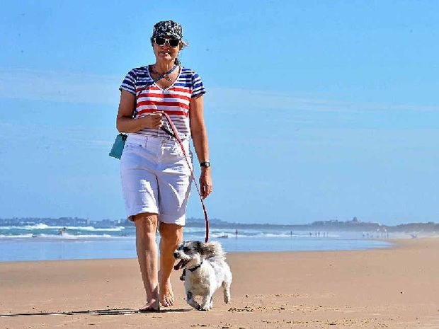 LUCKY LUCIE: Yaroomba's Sheryl Wright walks Lucie. The pup nearly died after eating a toadfish.