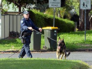 Police dog bites joyrider during arrest