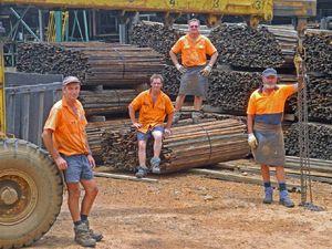 Koala sanctuary jobs