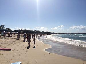 Noosa Main Beach evacuated after shark sighting