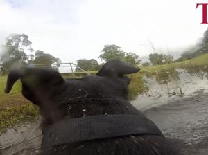 Cyclone + Snoop dog + GoPro = fun
