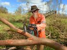 <strong> 1.45pm </strong> The Australian Defence Force cleared 324 trees in Byfield and 80 trees at Yeppoon Primary School in 2 days.