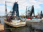 Local fishing industry wait for outcome of review
