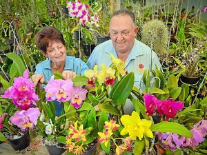 Ten things to do in Gladstone this Easter weekend