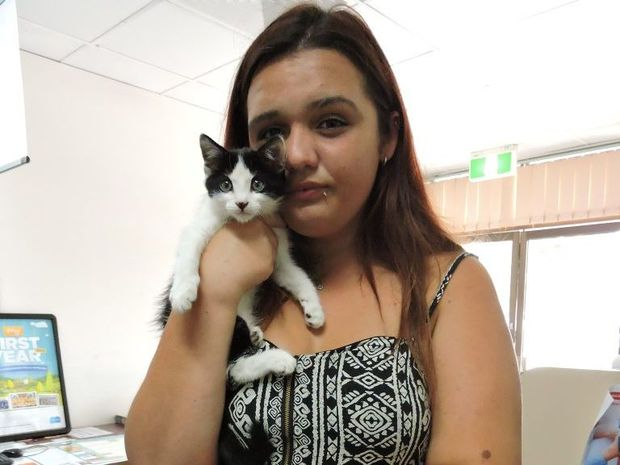 Harmony Maloney discovered the kittens injured and wrapped in cling wrap while out walking with her mum. One kitten was already dead, while it was a miracle the others survived - Sophie Lester/ Warwick Daily News