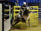 Corey West, rookie bull. Photo Allan Reinikka / The Morning Bulletin