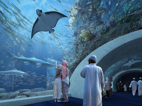 impression of main aquarium tunnel at the proposed public aquarium ...
