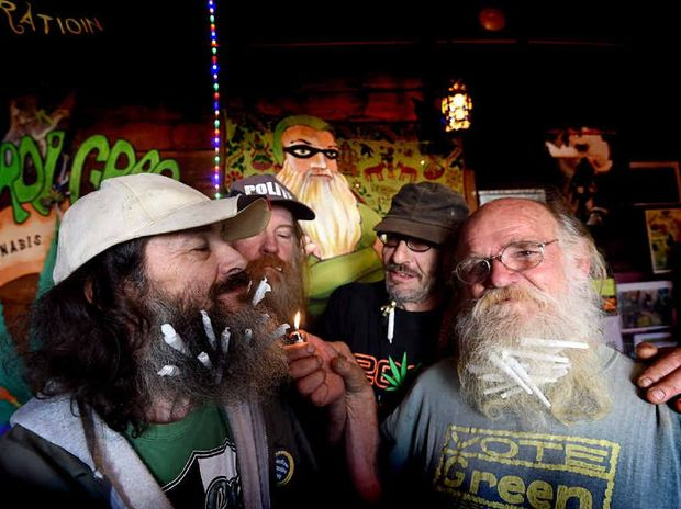 CANNABIS CAPERS: Dave Carr, Max Stone, Sam Bernard and HEMP Embassy president Michael Balderstone practise for a new event at this year's Mardigrass – Beard Stash, where participants have to hide as many buds in their beards as they can.