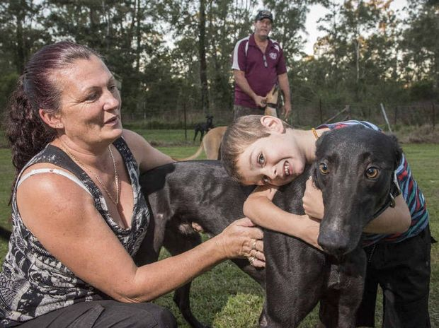 FURRY FRIEND: Trainers Sonia and Warren Kempshall with son Jasper, 4, and their greyhound Slick Jappa, one of their 'pets'.