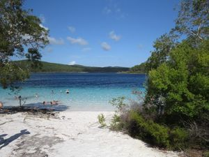 Foreigners favour the unspoiled beauty of Fraser Island
