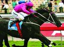 Lady Marmaletta wins Grafton Guineas Prelude