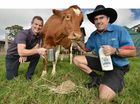 Maleny Dairies gets a foothold in Nambour and Coolum McCafes