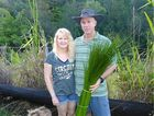 FLORAL HARVEST: Ross and Angela Bailey harvest grass tree stems, which are exported for use in floral arrangements in New York and Paris.