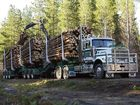 B-Doubles to haul out downed timber