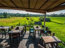 AN endless blue sky and emerald green rice paddies provide a stunning vista as a narrow winding path takes me from Ubud's main street into the countryside.