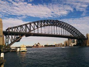 NZ to Australia: You're an embarrasment, cobbers