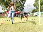 Emma Gaudoin and her dog Trevor are at the IPSA K9 event at the Iluka Public School on Saturday. Photo Debrah Novak / The Daily Examiner