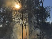 TASMANIA'S Overland Track was closed yesterday and bushwalkers were airlifted to safety following persistent bushfires.