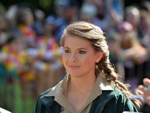 Bindi Irwin... back into the TV limelight