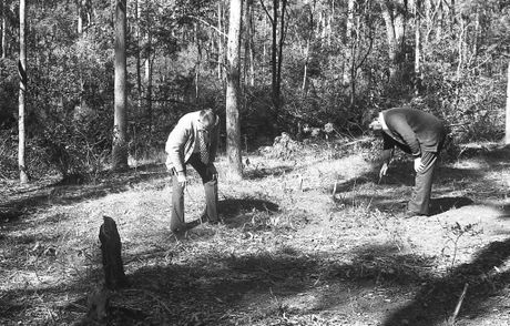 Historic: Crime: Murder Police investigate the site where the bodies of two Sydney nurses - Lorraine Wilson, 20, and Wendy Evan were found. Photo Chronicle Archives Published June 1976. Q598.