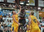 Meteors Tidjane Diop vs Brisbane Capitals Photo Tony Martin / Daily Mercury