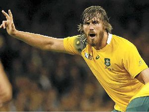 Call to name field after current Wallabies star
